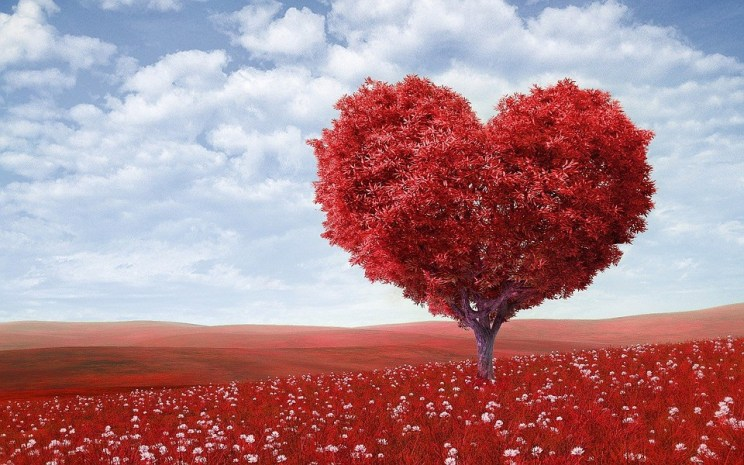 8 Mosse per avere una storia d'amore sana